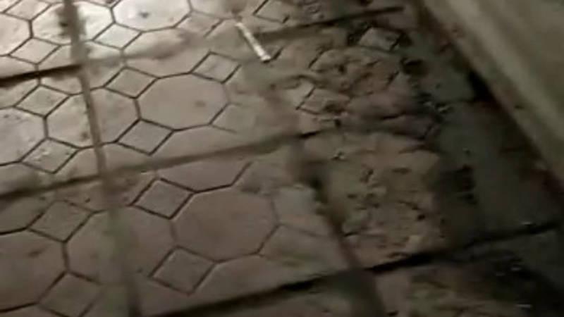 Подземный переход около восточного автовокзала в ужасном состоянии, - горожанка