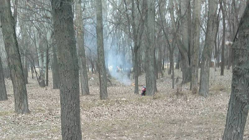 В городе Токмок в городском парке дворники сжигают мусор, - местный житель (фото)