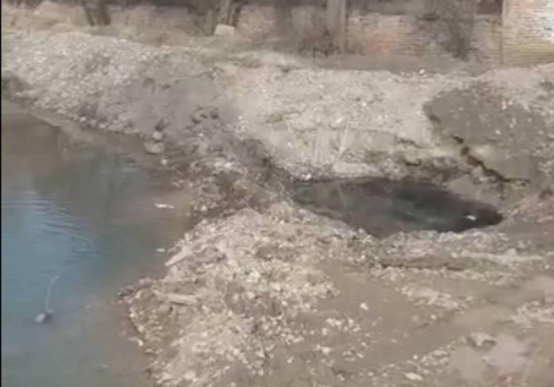 На проспекте Жибек-Жолу в реке Ала-Арча мазут, данный вопрос в компетенции Госэкотехинспекци, - мэрия