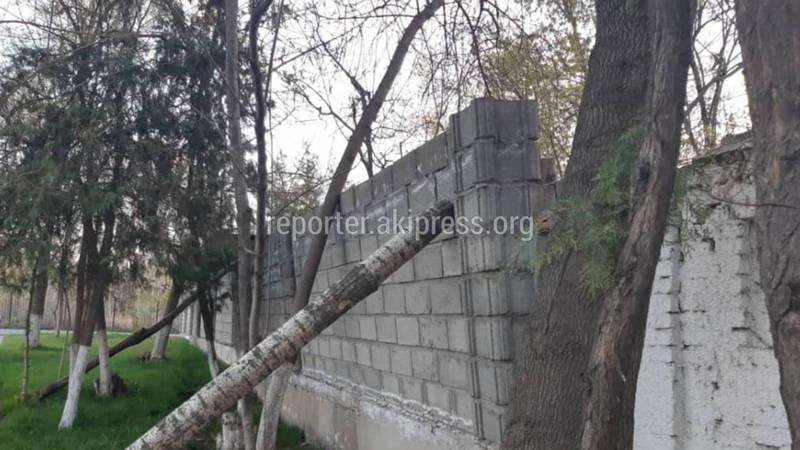 В Оше на ул.Супаналиева кирпичный забор может упасть на прохожих, - горожанин (фото)