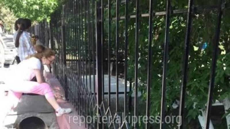 Родители решили помочь администрации школы №17 и разрешили детям красить забор