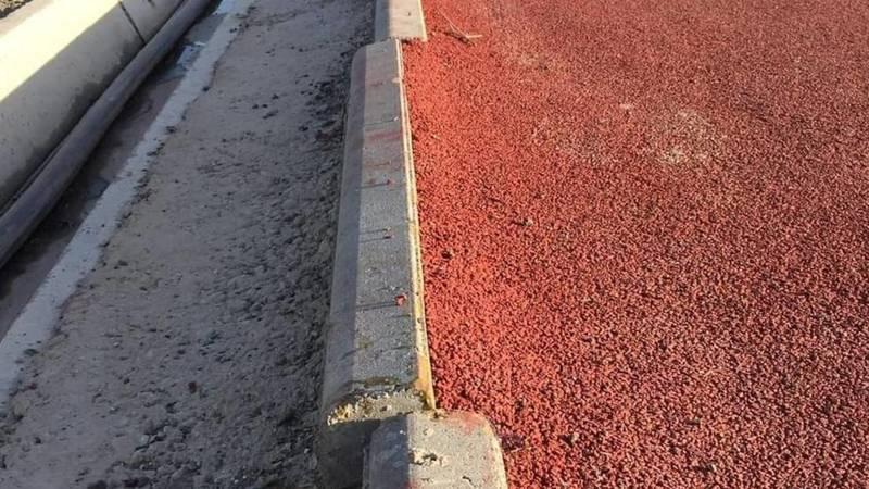 Бишкекчанин Талант недоволен работой подрядчиков парка «Адинай». Фото