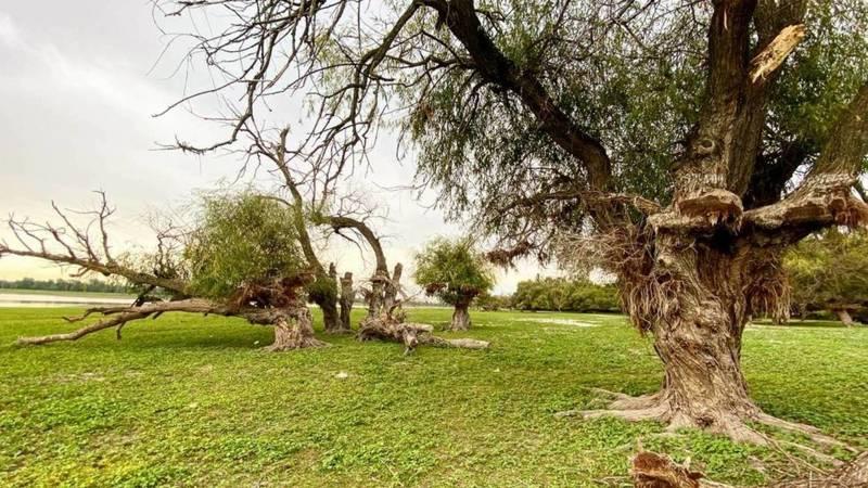 Красота природы Ала-Арчинского водохранилища. Фото бишкекчанки Айгерим