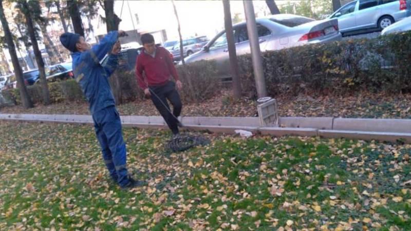 «Бишкексвет» демонтировал оборванный провод на бульваре Эркиндик