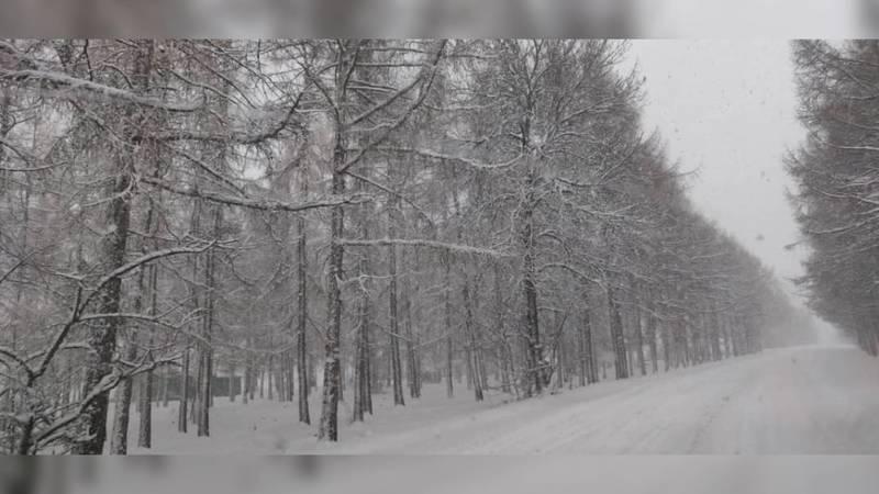 Снежная зима недалеко от национального парка Ала-Арча