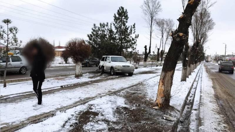 В Токмоке автомобиль вылетел с дороги и врезался в дерево. Фото и видео