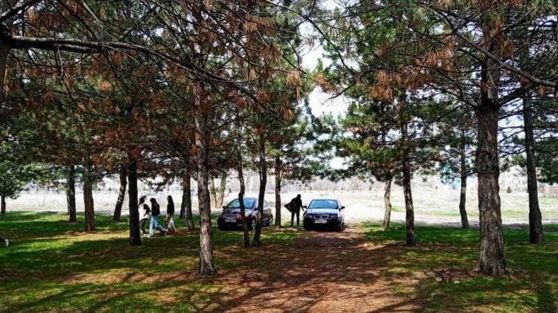 Две машины припарковались в парковой зоне. Фото горожанина