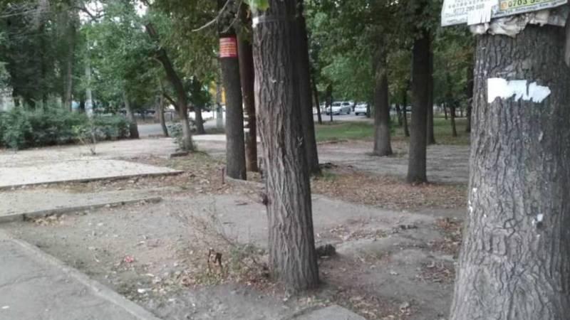«Бишкекзеленхоз» убрал мусор в парке возле «Дордоя» после жалобы горожанина. Фото