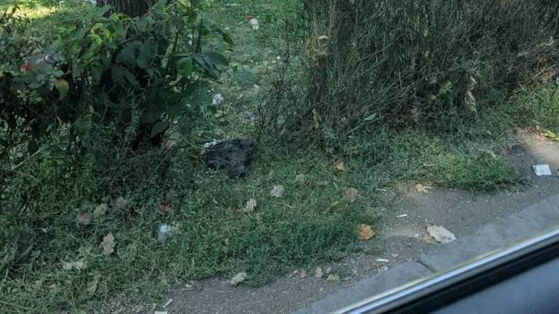 Горожанин жалуется на мусор на газоне Жибек Жолу. Фото