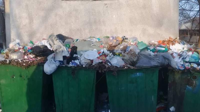 В Бишкеке на ул.Логвиненко возле СШ №35 не вывозят мусор, - горожанин (фото)
