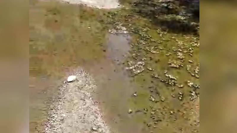 Бишкекводоканал очистил канализационный люк возле ЦСМ №8