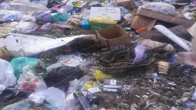 Житель села Пригородное жалуется на мусор. Фото