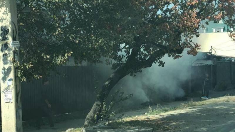 По ул.Абая сжигают сухотравие и листья, - очевидец