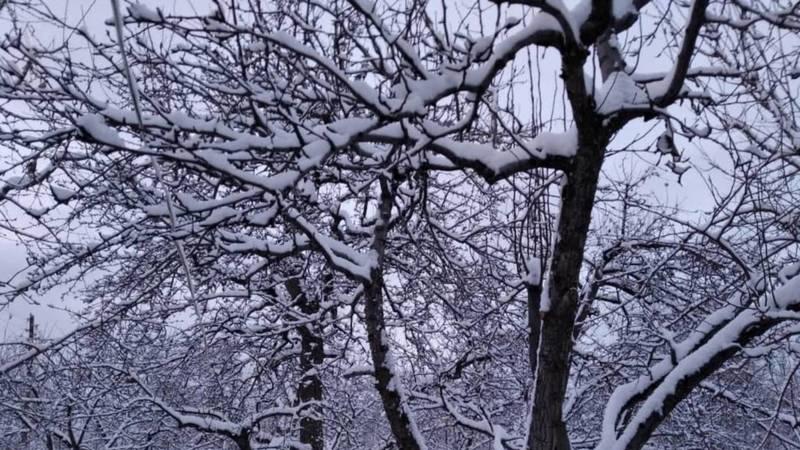 Снег в селе Кара-Ой. Фото местного жителя