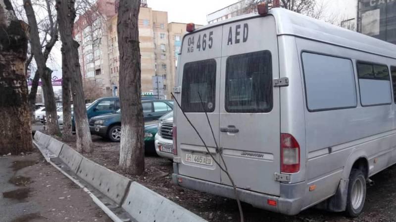На Шопокова бус припарковался, придавив один из саженцев. Фото горожанина