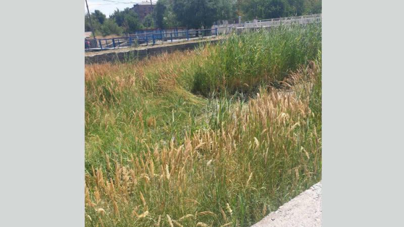 Река Ала-Арча будет очищена в августе, - мэрия Бишкека