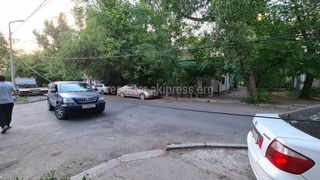 Улица Чокморова. Ветка повредила кабель