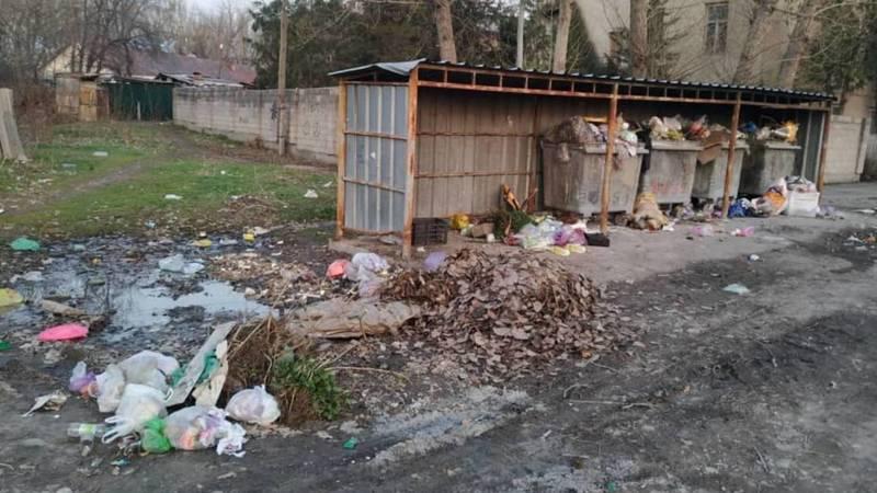 Возле училища №95 второй день не вывозят мусор, - горожанин. Фото