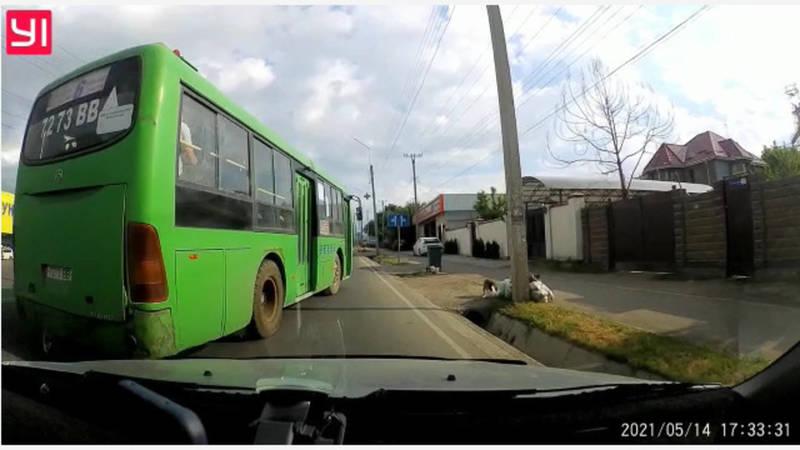 На улице Алыкулова водитель автобуса №6 создал аварийную ситуацию