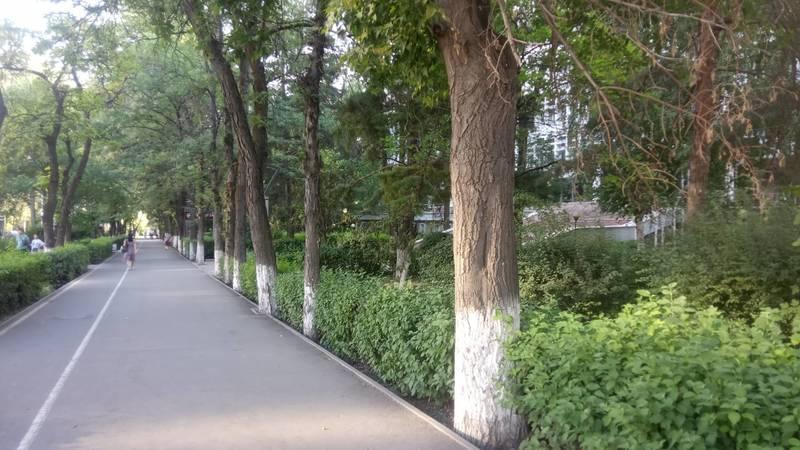 Горожанин предлагает учебным заведениям убрать ограждения по примеру Белого дома
