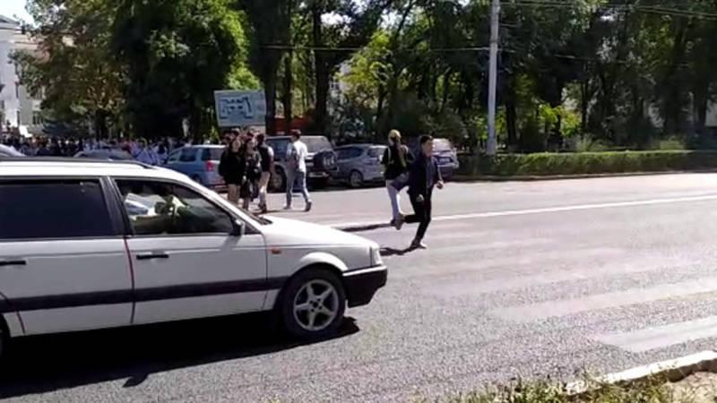 Горожанин просит вернуть зебру на Айтматова напротив КТУ. Видео