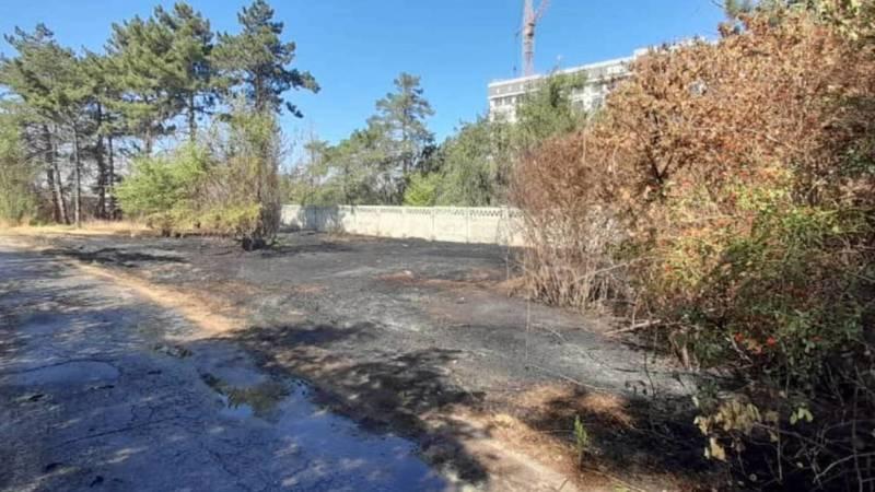 Очередной пожар в Ботаническом саду на Алматинке. Фото