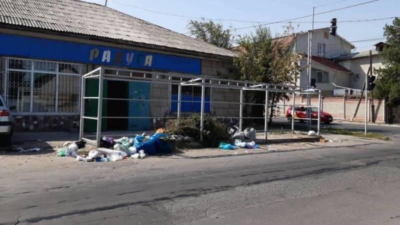 Горожанин просит мэрию Бишкека убрать мусорку на ул.Карасаева. Фото