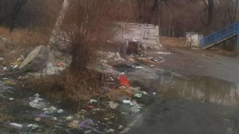 Бишкекчанка жалуется на мусор на ул.Усенбаева. Фото