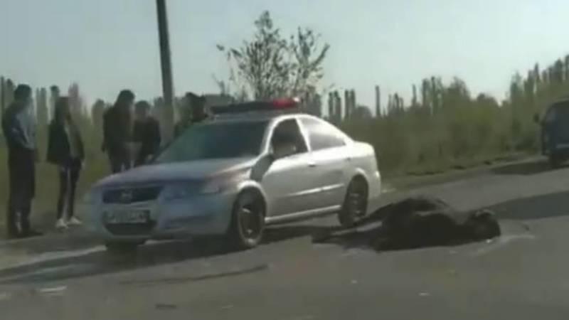 На трассе Алай—Ош сбили лошадь. Видео