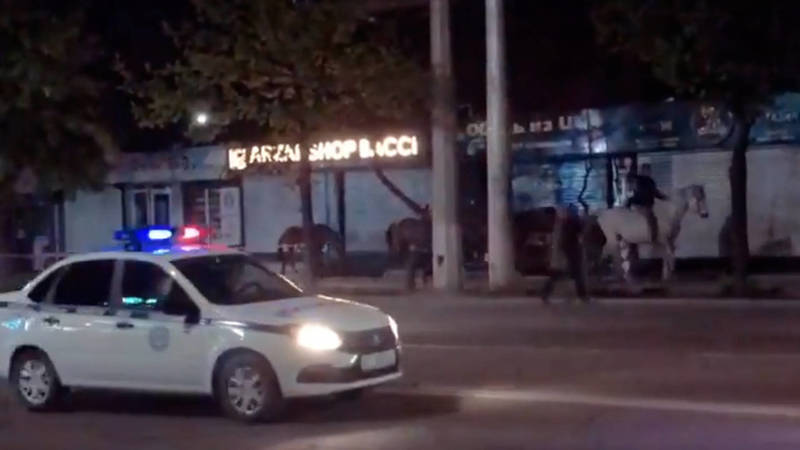 На Ахунбаева на глазах у патрульных прошел табун лошадей. Видео