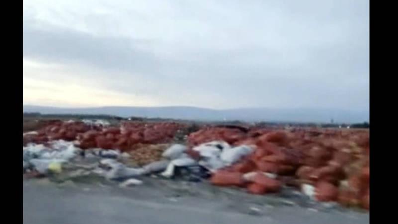 В районе села Ивановка вдоль дороги выбросили тонны мешков с луком