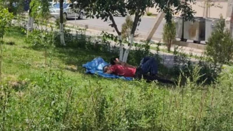 Горожанка жалуется на бомжей, которые живут возле детсада на Тыныстанова