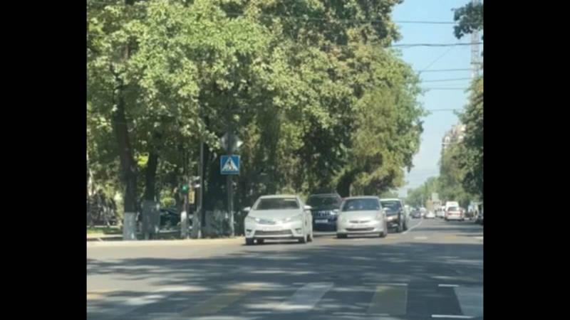 На Фрунзе-Тыныстанова из-за веток не виден светофор, - горожанин