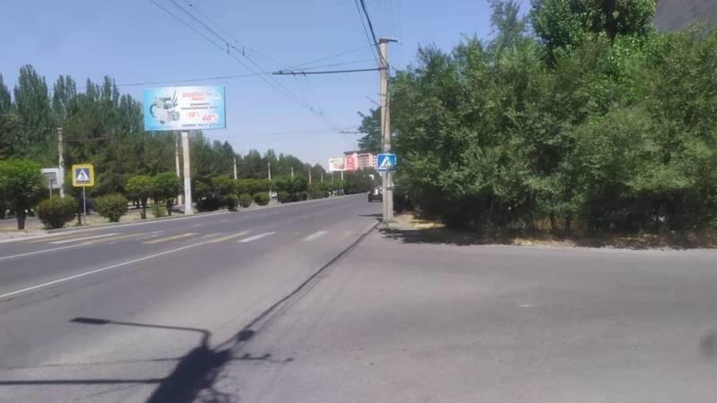 Пешеходный переход упирается в кусты, - горожанин