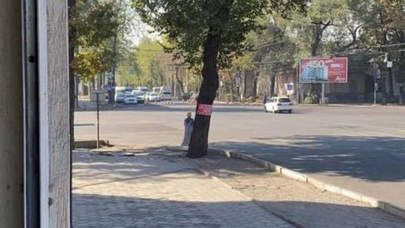 На Советской пробки из-за нанесения дорожной разметки. Фото горожанина