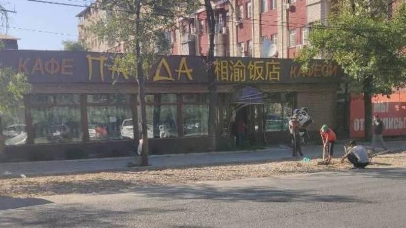 Законно ли строят парковку напротив кафе «Панда»? - горожанин (фото)