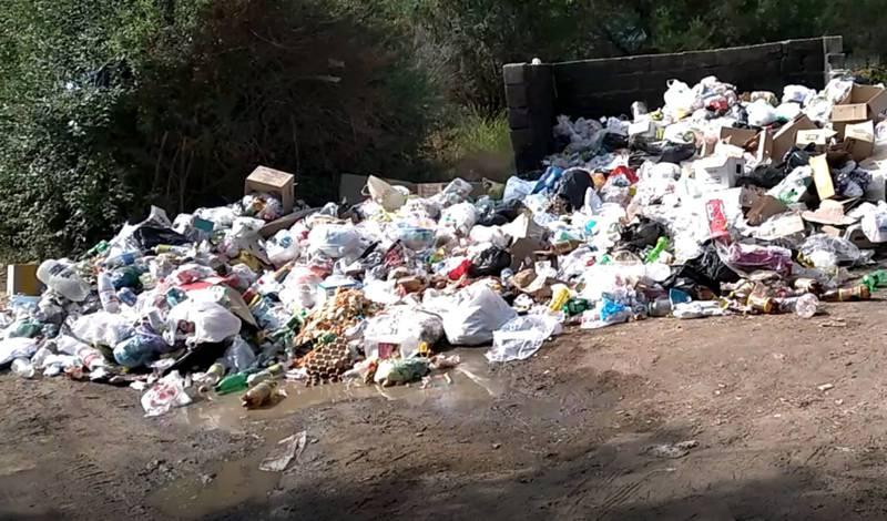 В селе Бостери в районе пансионата «Золотые пески» не вывозят мусор (видео)