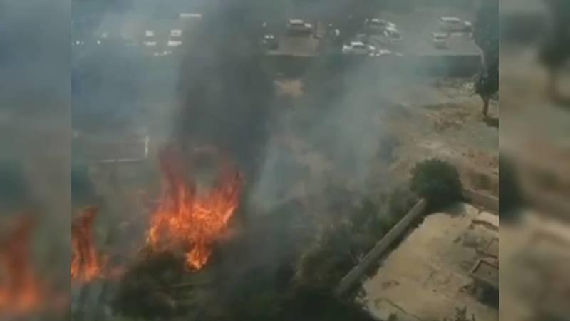 В центре Бишкека горит сухотравие. Видео