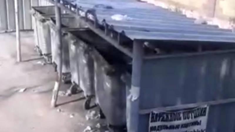 Жители дома на ул.Термечикова жалуются на вонь от мусорных баков