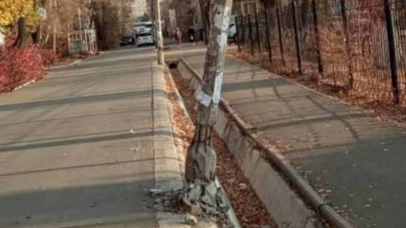 Горожанин сообщает об аварийном столбе в 6 мкр. Фото