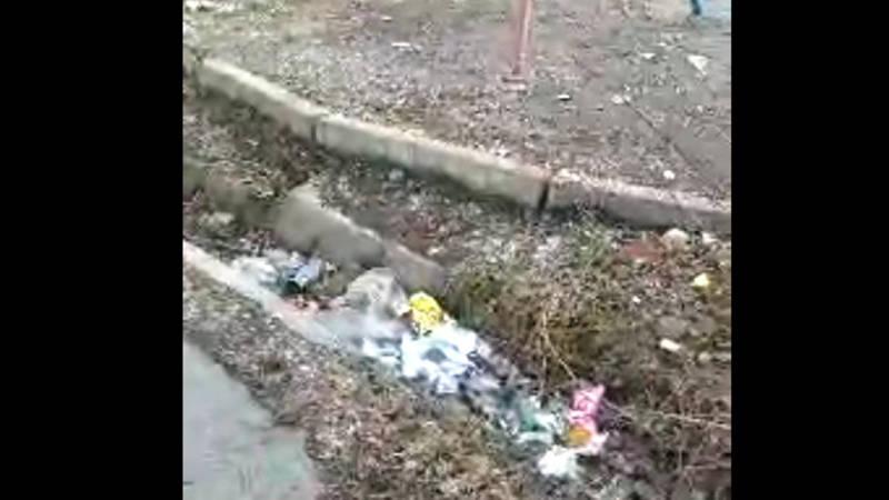 Бишкекчанка жалуется на дворы, «утопающие в мусоре»