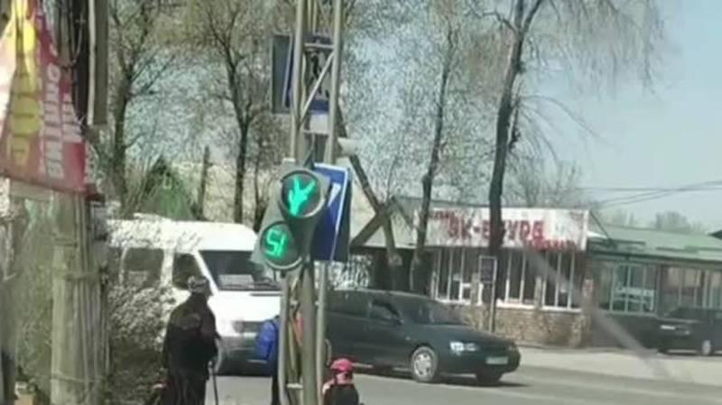 В Новопавловке перевернут пешеходный светофор. Видео