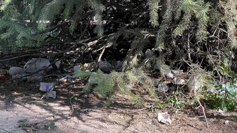 На Старой площади мусор «спрятали» под деревьями. Фото