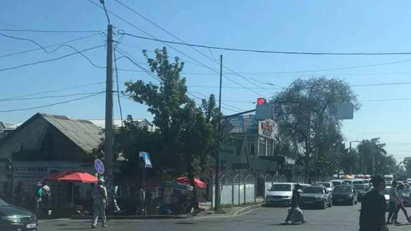Дорожный знак закрывает светофор на Чуй-Павлова (фото)