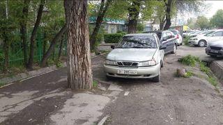 Парковка на тротуаре и газоне