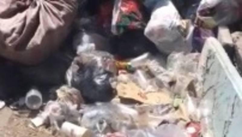 Горожанка жалуется на мусор возле дома №250 на ул.Киевской. Видео