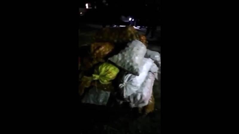 Жители Тюпского района собрали гумпомощь для Баткенской области. Видео