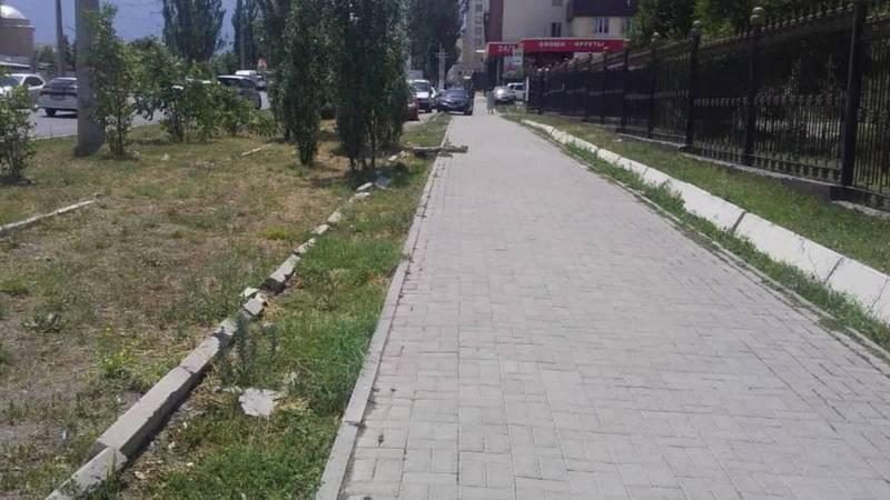 Почему на Тыналиева арык и газон по разные стороны тротуара? Фото горожанина