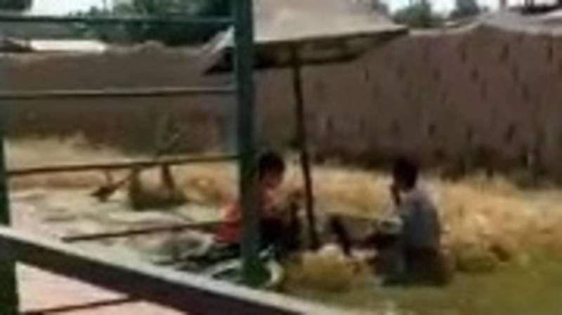 Жительница жилмассива Ак-Бата требует убрать детскую площадку. Видео