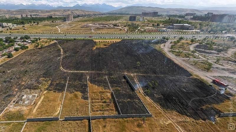 Последствия пожара возле парка «Ынтымак». Видео с дрона